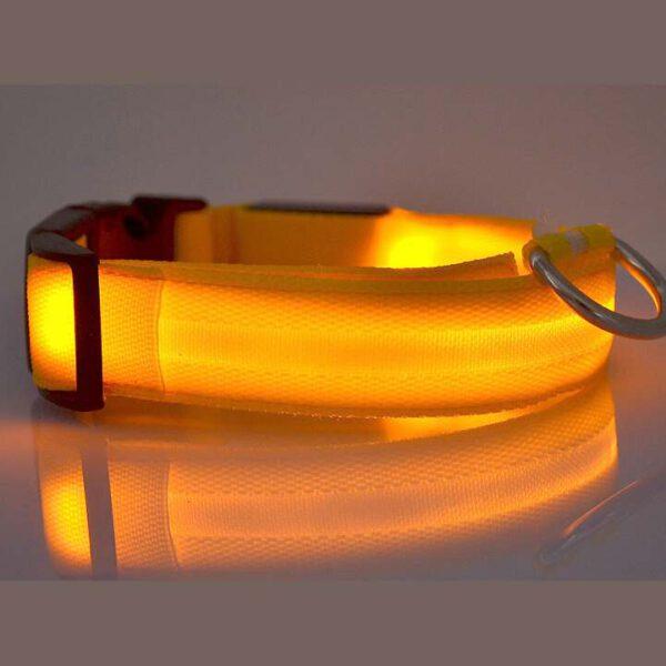 LED Halsband Gelb