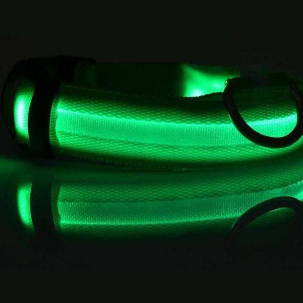 LED Halsband (grün)
