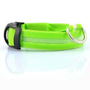 LED Halsband für Hunde (Grün)
