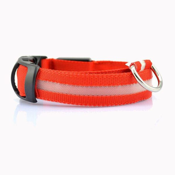 LED Halsband für Hunde (Rot)