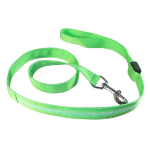 LED Leine für Hunde Grün