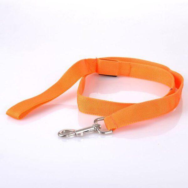 LED Leine für Hunde Orange