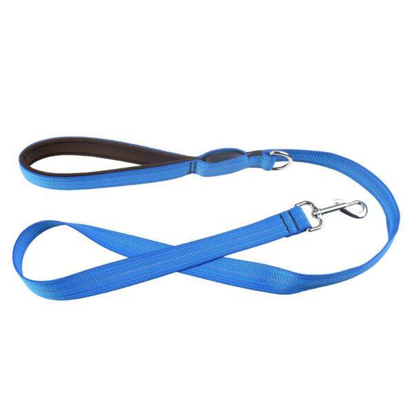Leuchtende Hundeleine Blau