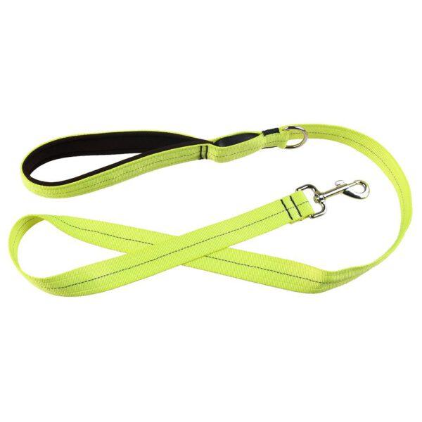 Leuchtende Hundeleine Grün