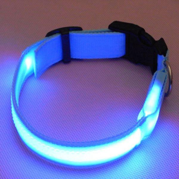 Leuchtendes Hundehalsband LED (blau) - USB
