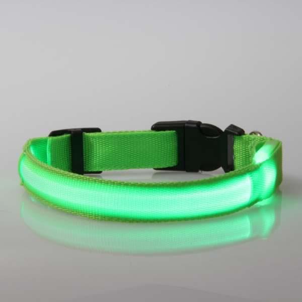 Leuchtendes Halsband für Hunde LED (grün) - USB