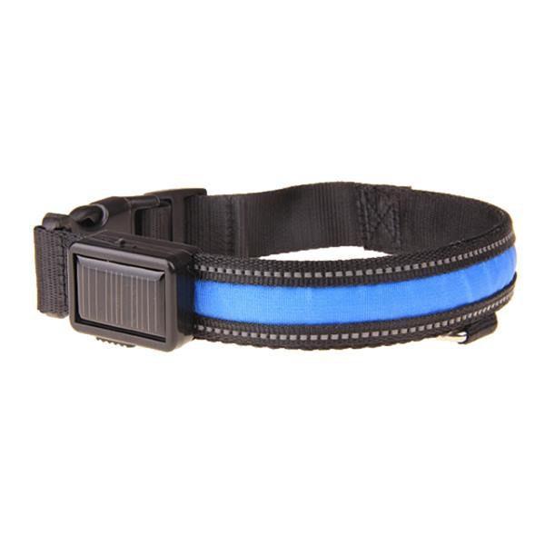 Leuchthalsband Blau