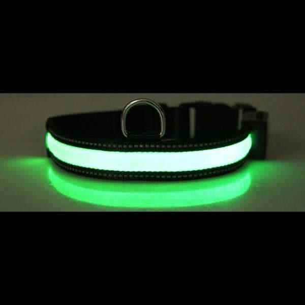 Leuchthalsband Grün