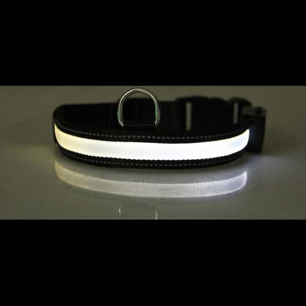 Leuchthalsband Weiß