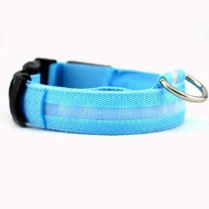 LED Halsband für Hunde