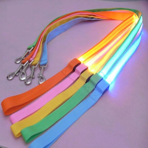 LED Hundeleine