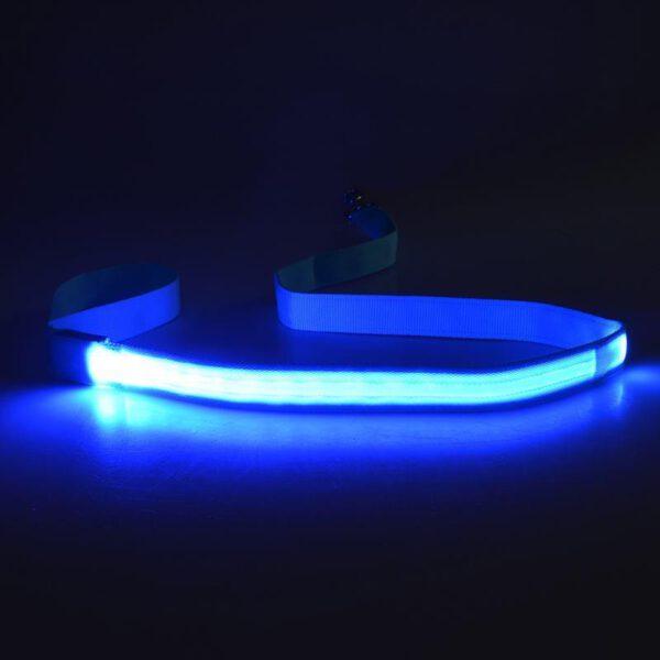 LED Hundeleine Blau