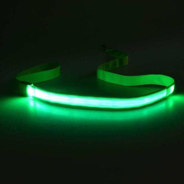 LED Hundeleine Grün