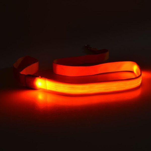 LED Hundeleine Orange
